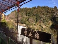 白糸 (9).JPG