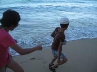 hawaii 226.jpg