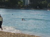 hawaii 259.jpg
